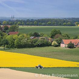 Blick über das Münsterland bei Billerbeck