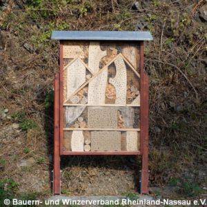 Insektenhotel am Weinbergsrand